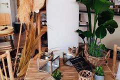 oliandre-Organic-Beauty_Natural-Living_44